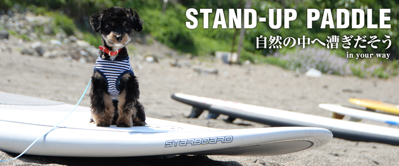 STAND-UP PADDLE 自然と戯れる